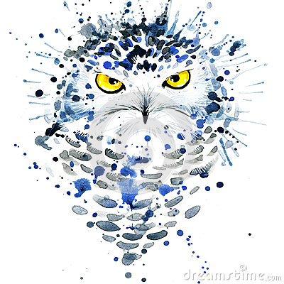 Free T-shirt Graphics/cute Snowy Owl, Illustration Watercolor Royalty Free Stock Photography - 55129897