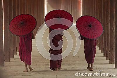 stock image of  buddhist monk