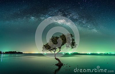 stock image of  landscape with milky way galaxy. night sky with stars