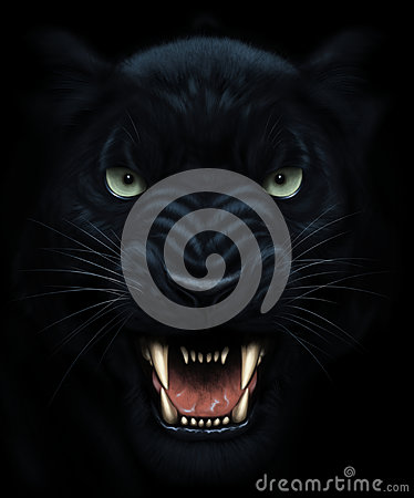 stock image of  panther face painting