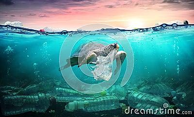 stock image of  plastic pollution in ocean - turtle eat plastic bag