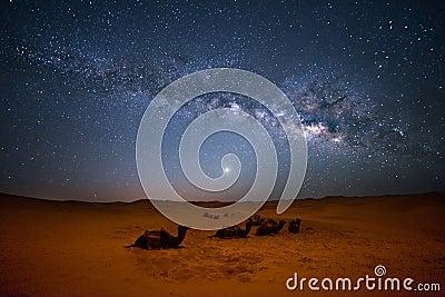 stock image of  sahara milky way
