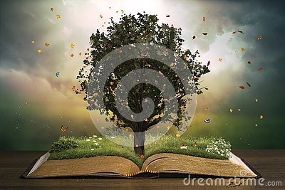 stock image of  tree growing on an open bible