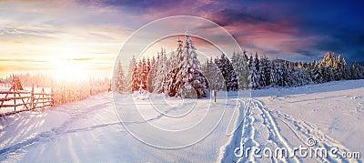 imagine stock despre  iarna drumul