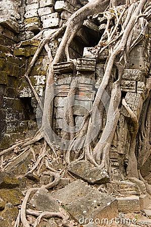 Ta Som Temple detail