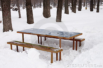 Table and benches in snow - RAW format