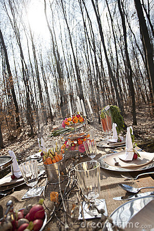Table with food in forest