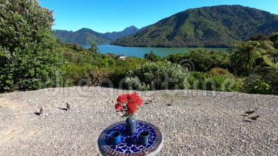Outdoor table with a view on Pelorus Sound, Marlborough Sounds, South Island, New Zealand, Oceania. stock video footage