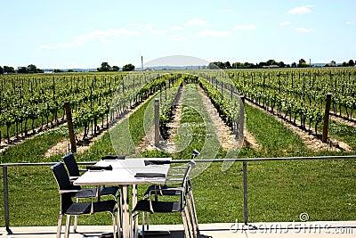 Table at vineyard