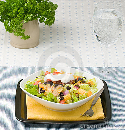 Free Taco Salad Stock Images - 10825214