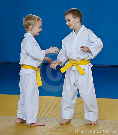 Taekwondo: two boys training