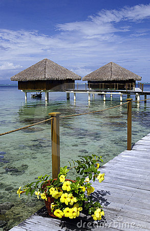Tahiti - French Polynesia - South Pacific