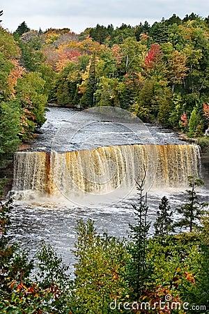 Free Tahquamenon Falls Stock Photography - 9276992