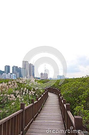 Taiwan nature preserve