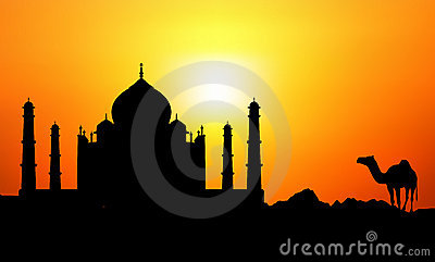 Taj Mahal & Camel