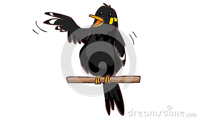 Talkative Hill Myna Bird Stock Vector - Image: 54387747 - photo#13