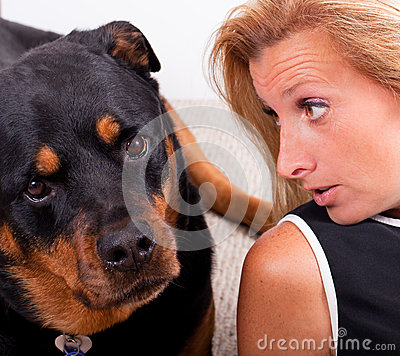 Free Talking To The Dog Stock Images - 26471934