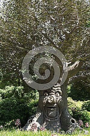 Free Talking Tree Stock Images - 44978504