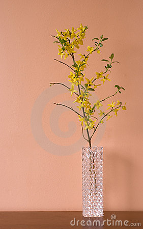 Free Tall Beautiful Flower Vase Royalty Free Stock Photography - 13986477