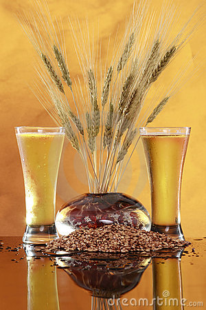 Tall cool beer wheat and barley