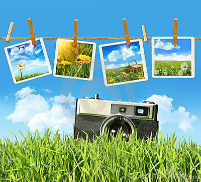 Tall grass with old vintage camera and pictures