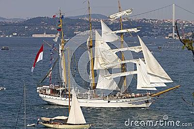 Tall Ships Regatta 2010 - Dewaruci Editorial Image