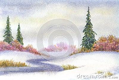 Tall spruce near the creek in snowy field