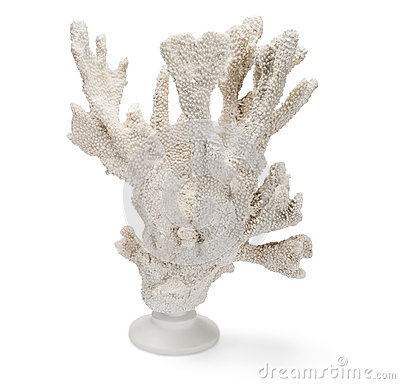 Free Tall, White Coral On Stand Over White Background Stock Photos - 68653173