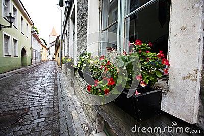 Tallin old city