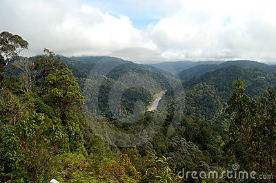 Taman Negara, jungle-view, Malaysia