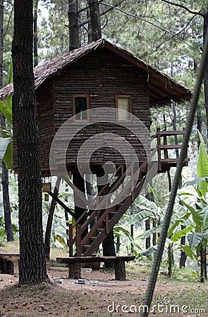 Free Tamandayu Stock Photos - 44226193