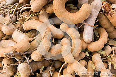 Tamarind Fruit on a market stall, Cambodia