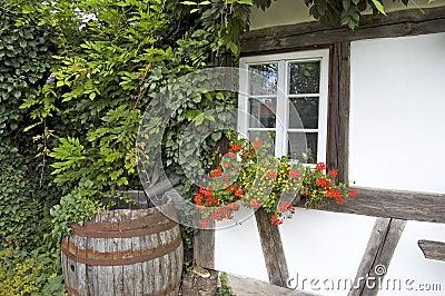 Tambor e flores