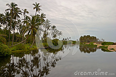 Tangalla backwaters