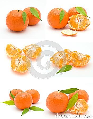 Free Tangerine Stock Photo - 12906580
