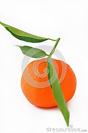Free Tangerine Royalty Free Stock Image - 18449106