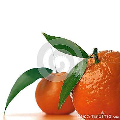 Free Tangerine Stock Image - 396941