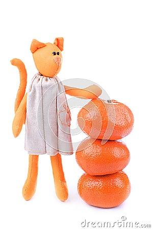 Tangerine cat