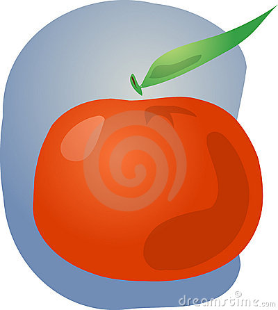 Tangerine fruit illustration