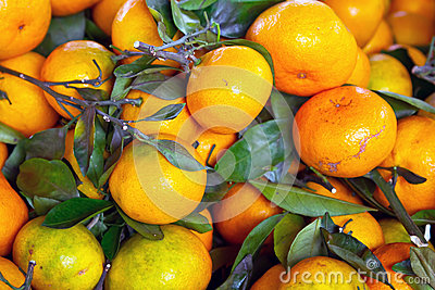 Tangerine fruits close up