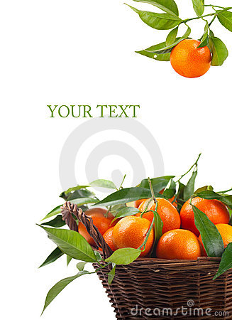 Free Tangerines Royalty Free Stock Photography - 17270117