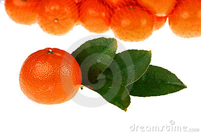 Tangerines packed