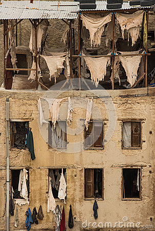 Free Tannery In Fes Royalty Free Stock Image - 37115986