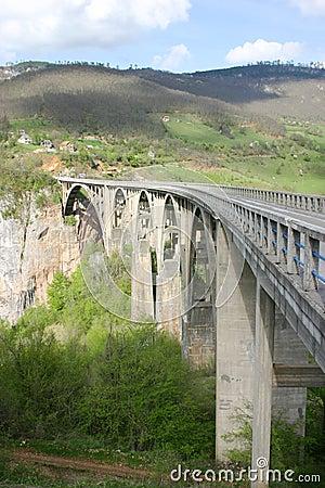 Free Tara Bridge Is Arch Bridge Over The Tara River Royalty Free Stock Image - 5285806