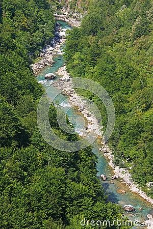 Free Tara River Royalty Free Stock Images - 21535029