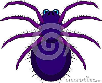 Tarantula Cartoon