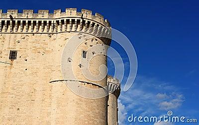 Tarascon castle exterior