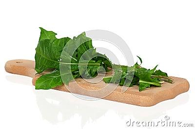 Taraxacum leaves