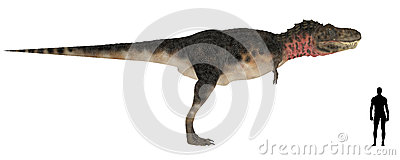 Tarbosaurus Size Comparison