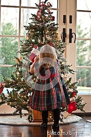 Target2241_0_ drzewa